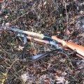 У Житомирській області мисливець під час полювання застрелив свого «колегу»