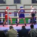 В Житомирі стартував чемпіонат України з боксу серед молоді
