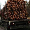 На Житомирщині екологи виявили вантажівку з деревиною без документів