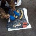 У Житомирі затримали військових, які намагалися продати вибухівку