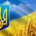 В Бердичівському районі тракторист отримав від президента почесне звання «Заслужений працівник сільського господарства»