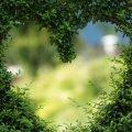 Как сохранить здоровье сердца: 5 золотых правил