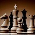 Житомирська шахістка виборола бронзу на чемпіонаті України