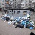 На Житомирщині двори багатоквартирних будинків потопають у смітті. ФОТО