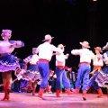У Житомирі відбудеться святковий концерт з нагоди 60-річчя Поліського ансамблю пісні й танцю «Льонок»