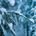 Синоптики рассказали, каким будет первый месяц зимы