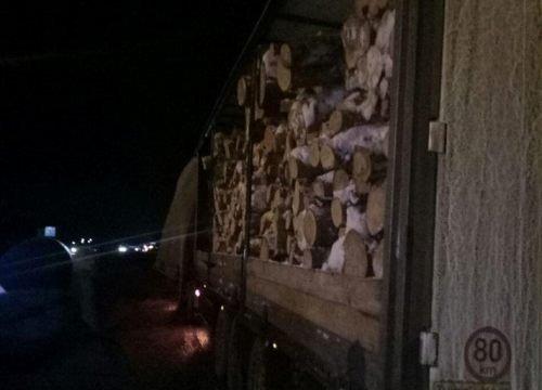 На Житомирщині затримали вантажівку з напівпричепом, яка перевозила деревину