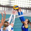 Чемпіонат Житомира з волейболу серед жінок: анонс 6 туру