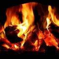 60-річний чоловік заживо згорів у власній оселі на Житомирщині