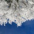 На Рождество в Украине будет до -16 градусов