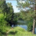 В Олевському районі створять природний заказник