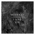 МУЗІКА. Woodkid - I Love You