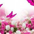 """Сайт """"Житомир-онлайн"""" вітає всіх Тетян з Днем ангела!"""