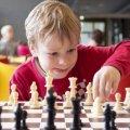 Визначилися переможці чемпіонату Житомира з шахів серед дітей до 10 років