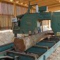 На Житомирщині на приватній пилорамі виявили та вилучили 234 незаконно здобуті колоди породи сосна