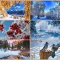 Прогноз погоди в Житомирі на 31 січня