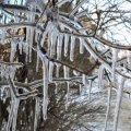 Сырость и морозы до -25°: синоптики дали прогноз погоды в Украине на ближайшее время