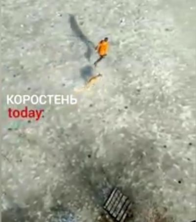 У Коростені дев'ятикласник врятував пса, який провалився під лід