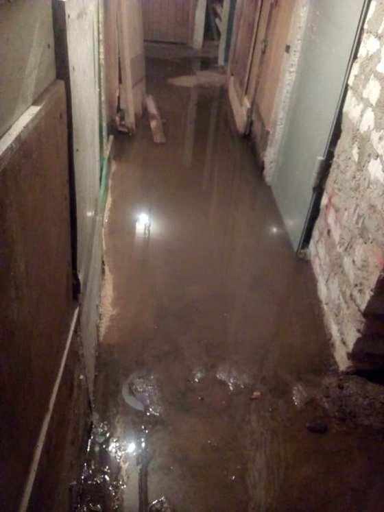 У Житомирі мешканці багатоповерхівки всі вихідні задихалися від смороду нечистот. ФОТО