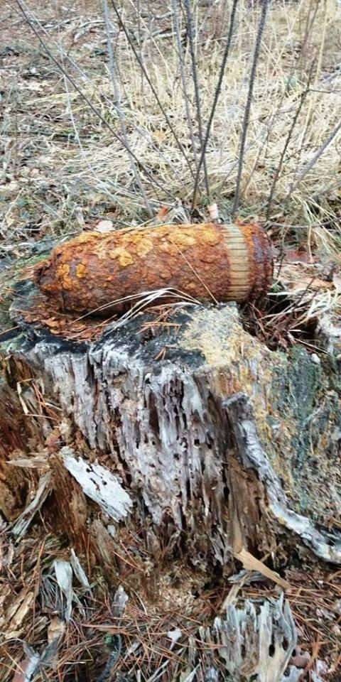 На Житомирщині знищили дві одиниці вибухонебезпечних предметів часів минулих війн