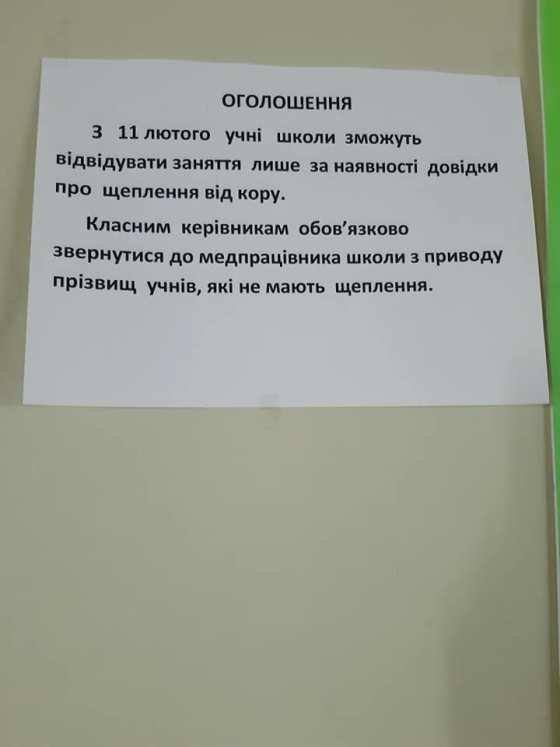 В одній із шкіл Житомира дітей без вакцинації не допускають до навчання