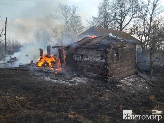На Малинщині через горіння сухої рослинності знищені будівлі. ФОТО