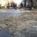 Комунальникам Бердичева боротися зі снігом на дорогах допомагають водії та бампера на їхніх автівках. ФОТО