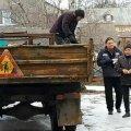 В Бердичеві просто у вантажівку скидали впійманих бродячих собак. ФОТО