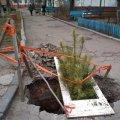 В Житомирі в центрі міста майже два місяці відкрите провалля. ФОТО