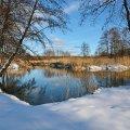 Яка погода буде в Житомирі 13 лютого