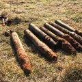 На Житомирщині піротехніки знищили 7 артснарядів часів минулих війн