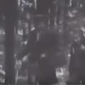 В Житомирской области в 1981 году сняли документальный фильм «Тайны старых дотов». ВИДЕО