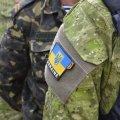 На полігоні під Житомиром знайшли тіло військового: що відомо