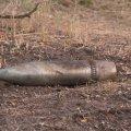 В Житомирской области нашли артснаряды