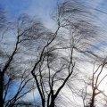 Житомирян попереджають про сильні пориви вітру