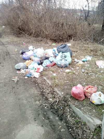 Ось так вивозять сміття у Бердичеві. ФОТО