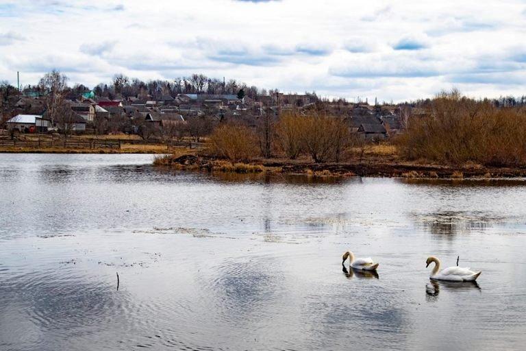 Словечанські краєвиди у весняні сонячні дні. ФОТО