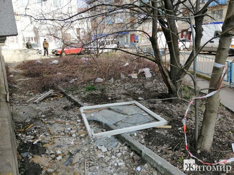 Прибирання по-житомирськи: Сміття в центрі міста, а поруч охайні дворики. ФОТО