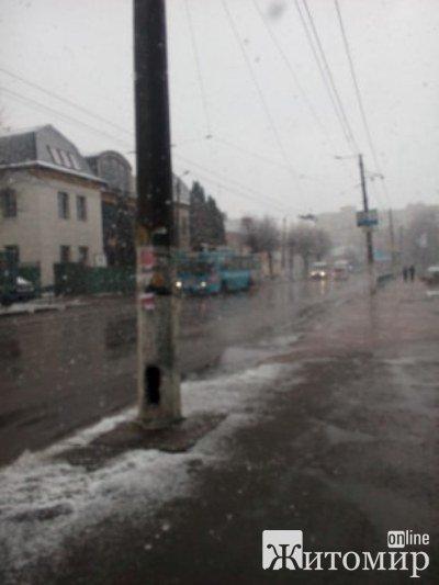 В Житомирі тільки-но почалася весна, а тут знову настала зима. ФОТО