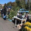 У Житомирі з'явиться торгівельний майданчик, де продаватимуть квіти, розсаду та саджанці