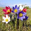 Прогноз погоди в Житомирі на 6 березня