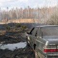 Шашлик на Коростенщині закінчився пожежею та спаленою автівкою. ФОТО