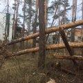 Наслідки негоди в одному з районів Житомира. ФОТО