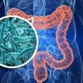 У Радомишльському районі зростає рівень захворюваності на кишкові інфекції