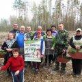 Лісівники Житомирського лісгоспу розпочали посадку лісу