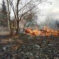 Упродовж минулої доби вогнеборцями області ліквідовано 13 загорянь минулорічної сухої рослинності на загальній площі 25 га