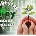 На Житомирщині стартує Всеукраїнська акція «Майбутнє лісу - в твоїх руках»