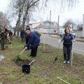 В День лісу в Житомирі посадили дерева