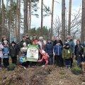 """На Житомирщині """"сонячні"""" діти садили ліс"""