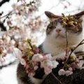 Прогноз погоди в Житомирі на 29 березня